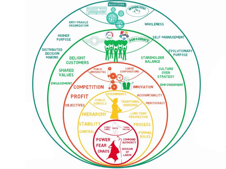 iqo conseil collaboration dynamique humaine